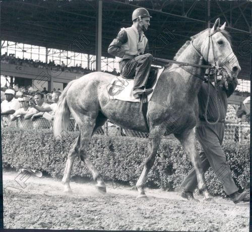 1960 DRC Fred Wirth up QH race