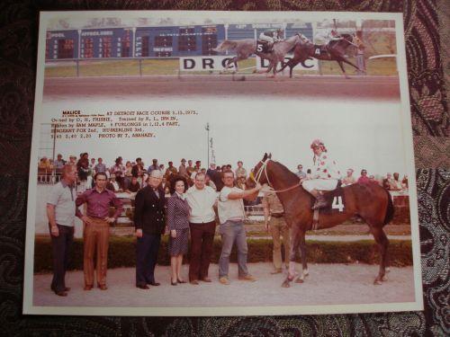 DRC 1975 Sam Maple