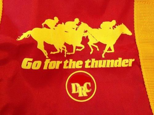 DRC_Go For The Thunder_Detroit Race Course