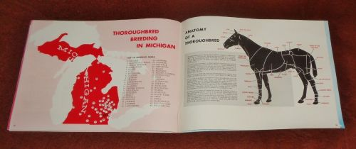 Mi. Thoroughbred Breeding