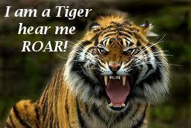 I Am A Detroit Tiger Hear Me Roar!