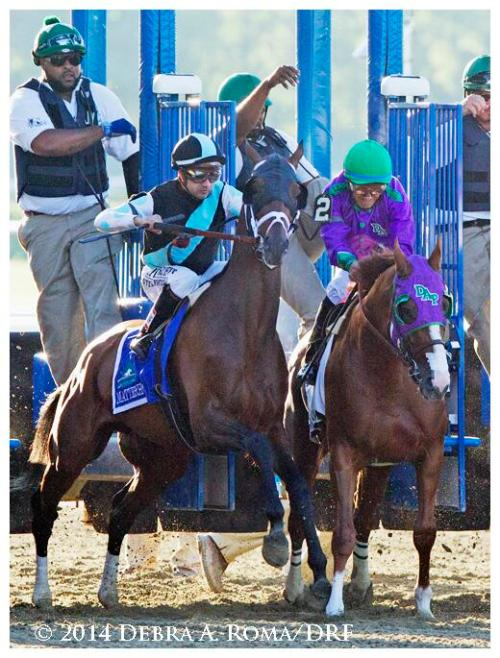 California Chrome Belmont Start