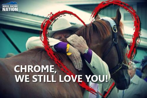 We Still Love You California Chrome