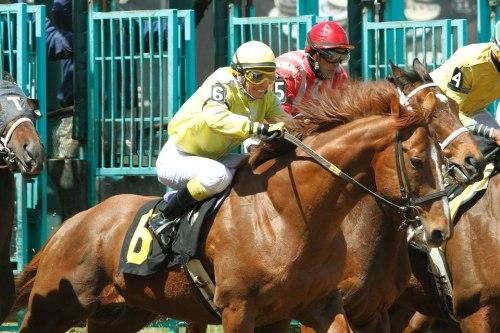 Jockey Jane Magrell 2