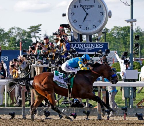 epa04787229 Jockey Victor Espinoza riding American Pharoah wins the 147th Running of the Belmont Stakes at Belmont Park Racetrack in Elmont, New York, USA, 06 June 2015. American Pharoah won the Belmont Stakes, becoming the first horse to win the coveted Triple Crown of US horse racing in 37 years.  EPA/PETER FOLEY
