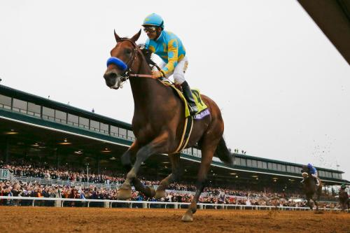 American Pharoah, with Victor Espinoza up, wins the Breeders' Cup Classic horse race at Keeneland race track Saturday, Oct. 31, 2015, in Lexington, Ky. (AP Photo/Brynn Anderson)