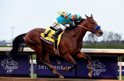 American Pharoh Breeders Cup Winner 2015